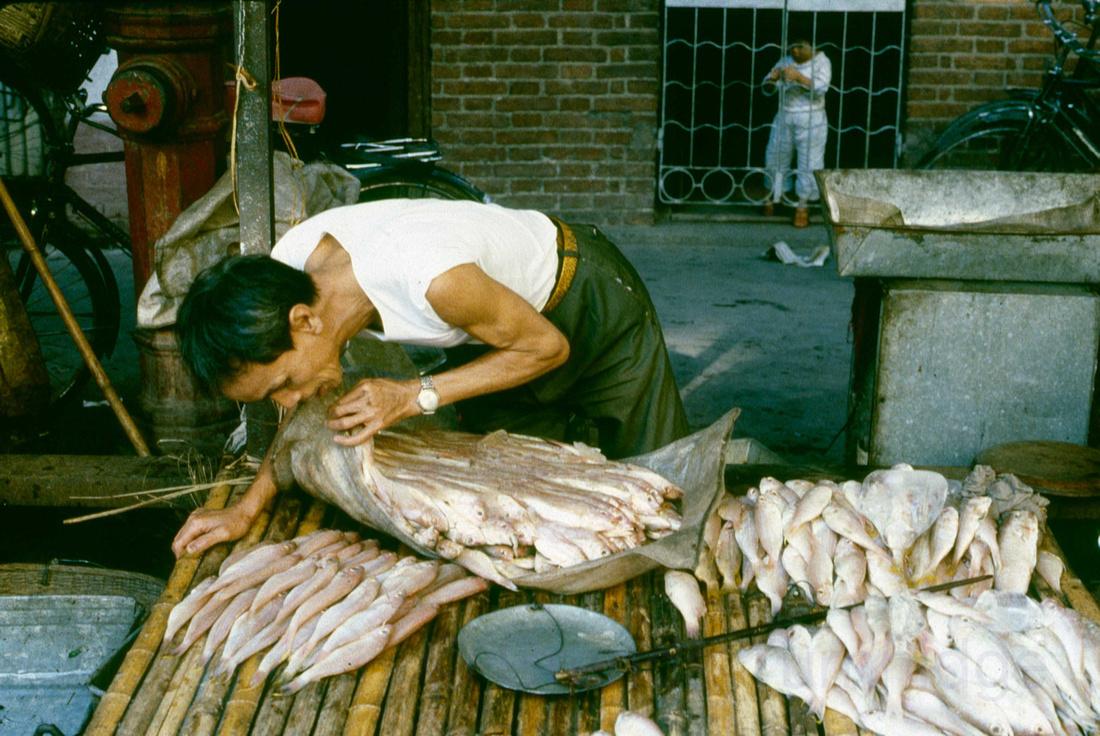 Qingping Lu, fishmonger