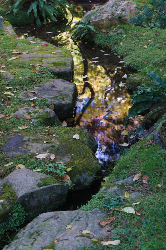 Jardin Albert Kahn 16